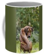 Rhodesian Ridgeback Puppy Coffee Mug