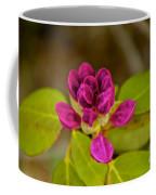 Rhododendron Bud Coffee Mug