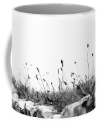 Ribwort Plantain Coffee Mug