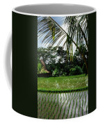 Rice Fields Bali Coffee Mug