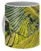 Rice Fields Terraces Coffee Mug
