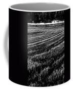 Rice Paddies Coffee Mug