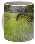 Rice Paddy Coffee Mug