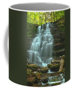 Ricketts Glen Cascading Falls Coffee Mug