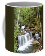Ricketts Glen Delaware Falls Coffee Mug