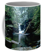 Ricketts Glen Falls 016 Coffee Mug