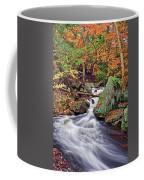 Ricketts Glen Falls Coffee Mug