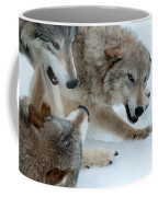 Right Of Passage Coffee Mug by Sandra Bronstein