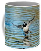 Ring-necked Drake Starting To Land Coffee Mug