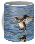Ring-necked Duck Landing Coffee Mug
