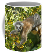 ring-tailed lemur Madagascar 1 Coffee Mug