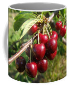 Ripe Cherries Coffee Mug