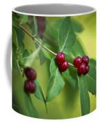 Red Berries Botanical Christmas Art Coffee Mug