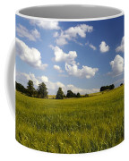 Green Belt Land 2 Coffee Mug