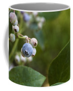 Ripening Blueberries Coffee Mug