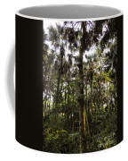 River Bend Park 2 Coffee Mug