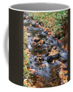 River Cascades Coffee Mug
