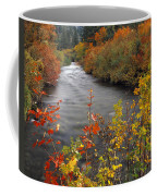River Color Coffee Mug