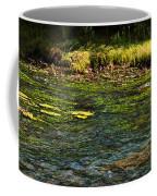 River Colors Coffee Mug