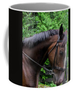 River Coffee Mug