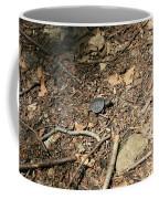 River Journey Coffee Mug