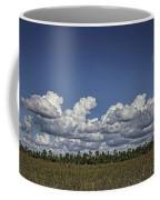 River Of Grass Coffee Mug by Anne Rodkin