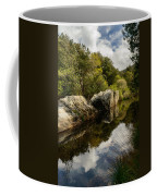 River Reflections II Coffee Mug