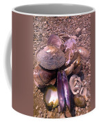 River Shells Coffee Mug