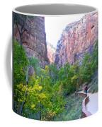 River Walk In Zion Canyon In Zion Np-ut Coffee Mug