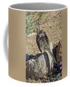 Roadrunner Warming In Sun Coffee Mug