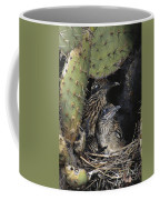 Roadrunners In Nest Coffee Mug