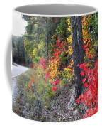 Roadside Fall Colors Coffee Mug