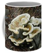 Roadside Treasure Coffee Mug