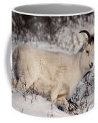 Roamer Coffee Mug