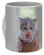 Roar Coffee Mug