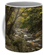 Roaring Branch Brook Coffee Mug