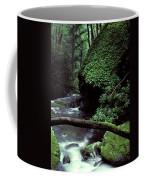 Roaring Fork Creek  Coffee Mug