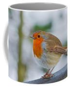 Robin 3 Coffee Mug