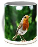 Robin Bird Photograph Coffee Mug