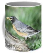 Robin Eating Mealworm Coffee Mug