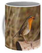 Robin On A Log -2 Coffee Mug by Paul Gulliver