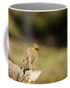 Robin On A Log Coffee Mug