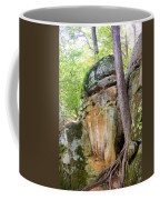 Rock Formation Wildcat Den State Park Coffee Mug
