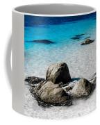 Rock Garden In Water Coffee Mug
