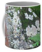 Rock With Moss Coffee Mug
