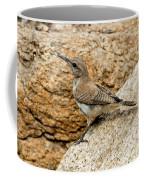 Rock Wren Juvinile Coffee Mug