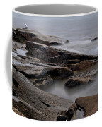 Rockport Seagull Coffee Mug