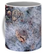 Rocks In Ice Coffee Mug