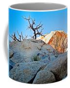 Rocks In Sun And Shade Along Barker Dam Trail In Joshua Tree Np-ca- Coffee Mug
