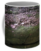 Rocks - Parfreys Glen - Wisconsin Coffee Mug